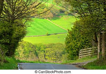 Bradfield Dale - Hoar Stones Road in Bradfield Dale South...