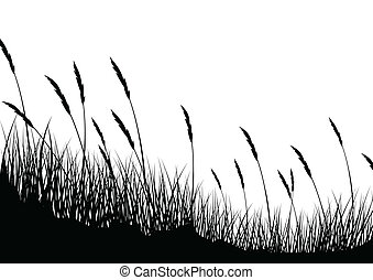 Grass background - Vector Illustration Of Grass background