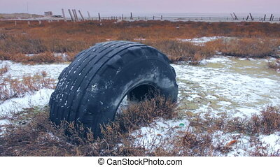 Winter landscape with an old tire at salty estuary. Shot...
