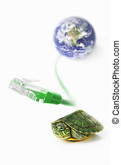 Turtle, Lan cable and world globe - The concept for slow...