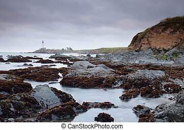 Pacific coast - Pacific ocean coast near Pigeon Point...