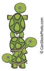 Turtle Teamwork