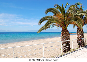 The beach with palm trees and mountain Olympus on...