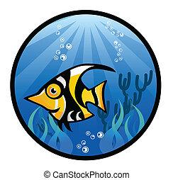 tropical, pez