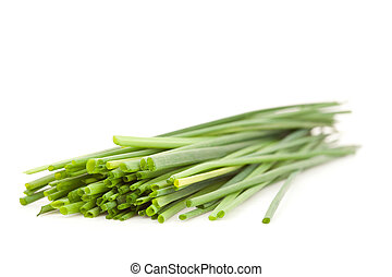 Close up of chive branches
