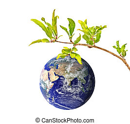 Planet Earth as a fruit on branch