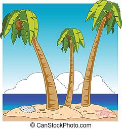 sandy beach - A sandy beach with palm trees