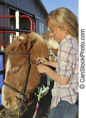Girl Putting on bridle - young girl puts bridle on her pony