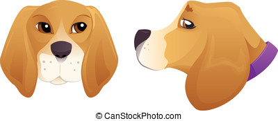 Beagle dog head  - Cute Beagle dog head set