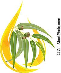 eucalipto, esencial, aceite