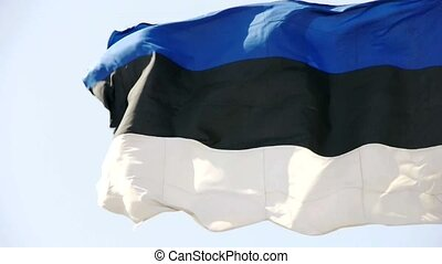 Estonia flag is fluttering in wind.