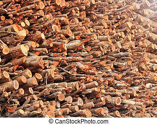 Deforestation-, troncos, cortado, madera, amontonado, venta