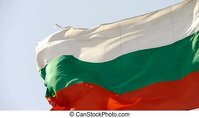Bulgaria flag flutters in wind.