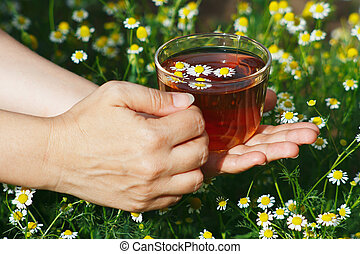 Hand with cup of herbal tea and chamomile still life