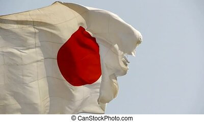 Japanese flag is fluttering in wind