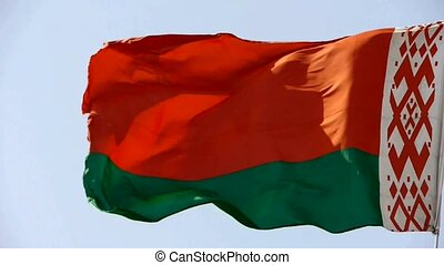 Belarus flag flutters in wind.