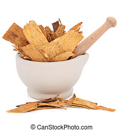 Astragalus Root Herb - Astragalus root herb used in...