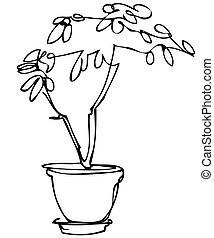 schizzo, stanza, pianta, fiore, vaso