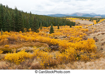 Fall Mountain Landscape in Colorado