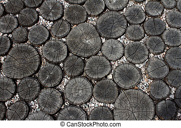 transverse sections of logs - background from transverse...