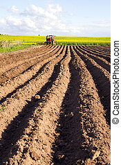 spring tillage in the ground and  tractor