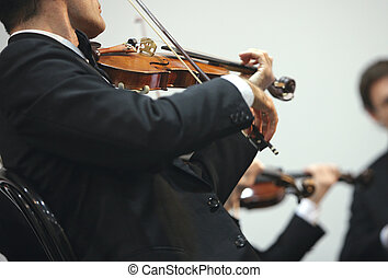 violinist at the concert