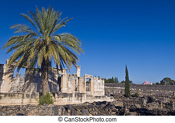 Capernaum synagogue - Ruins of the synagogue of Capernaum ,...