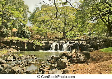Botanical garden waterfall (2)