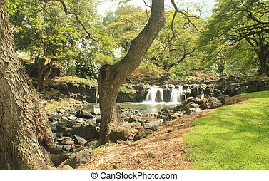 Botanical garden waterfall 4 (2)
