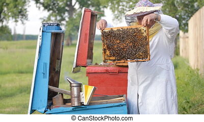 Beekeeper with honeycombs
