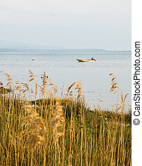 boat in bay at sunset with reeds in foreground