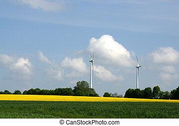 Windgenerators in rapeseed fields