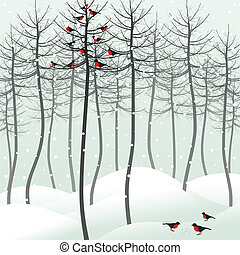 Bird in wood - Birds sit on a tree in the winter. A vector...