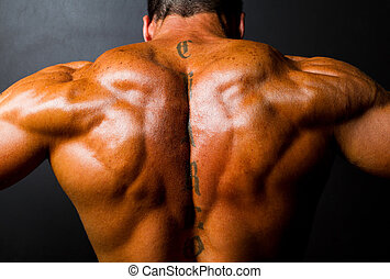 muscular bodybuilders back on black background