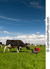 Young farmer with laptop in field with cows - Young farmer...