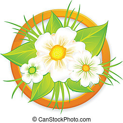 Bouquet of daisies in circle