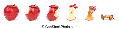 Apple in a sequence from fresh till dried - Combine six...