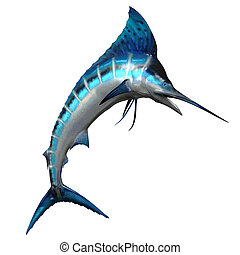 Marlin 02 - The Marlin fish is one of the fastest swimming...