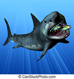 Megalodon - The Megalodon was the most powerful predator in...