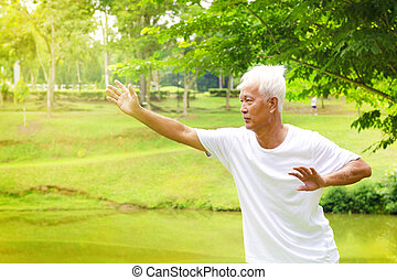 Tai chi senior - Asian senior man practicing tai chi in the...