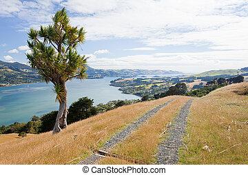 Otago peninsula coastal landscape, Dunedin, NZ - Otago...
