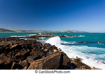 Curio Bay, South Coast of New Zealand South Island - Curio...
