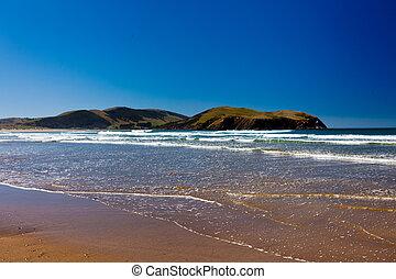 Curio Bay, South Coast of New Zealand South Island - Curio...