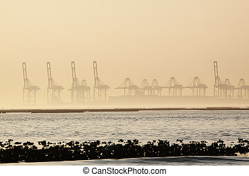 container cranes on a foggy morning