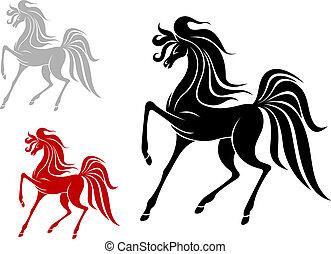 Arabian stallion