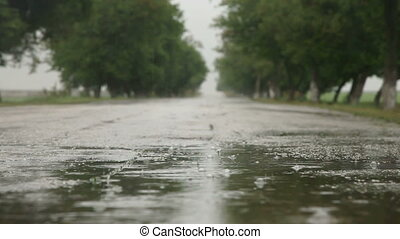 Wet Season - Raindrops In Road Puddle, Surface Level