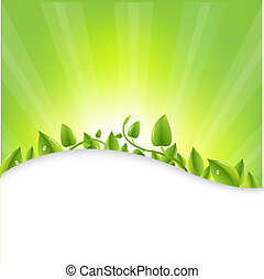 Green Leaves With Sunburst  And Rays, Vector Illustration