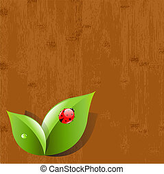 Wood Background With Leaves And Ladybug