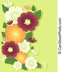 clematis flowers - an illustration of clematis flowers in...