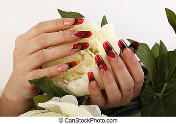 Female hands with manicure, nails